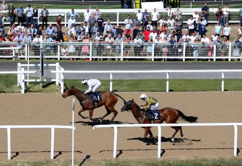 Newcastle tips: Racecard, analysis and preview for the feature contest as racing returns on Monday