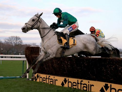Haydock races: tips, racecards and previews for Saturday's Betfair Chase card