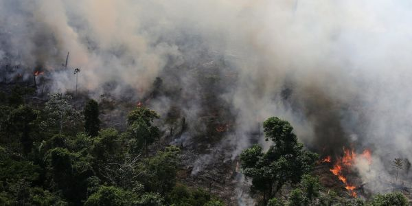 Brazil has seen 100,000 fire alerts in 10 days, but it's not just the Amazon -one map shows how much of South America is burning