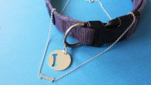 You can now get matching BFF necklaces for you and your dog