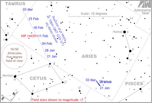 Watch asteroid (4) Vesta hide a naked-eye star in Aries on 11 February