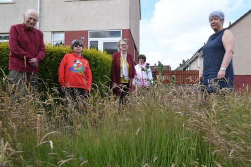Locals furious over grass near their homes going uncut for five months