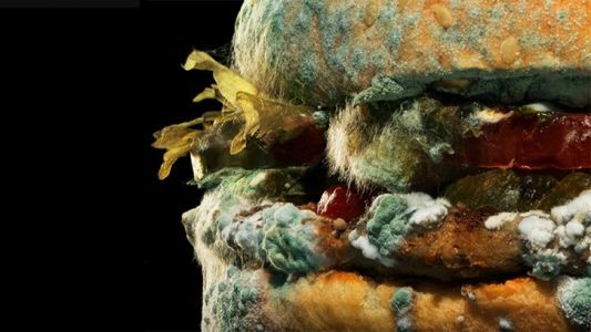 Fast food chains at war over mouldy ads