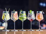 Wine sales fall as Britons develop a growing taste for flavoured gin and cocktails