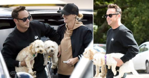 Ant McPartlin is living the dream with his arms full of dogs on trip out with Anne-Marie Corbett
