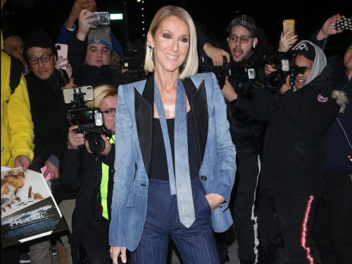 Céline Dion paired a '90s-inspired denim pantsuit with an $860 zebra-print handbag