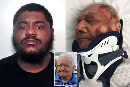 Hit-and-run driver left loving granddad with horrific injuries after striking him during police chase