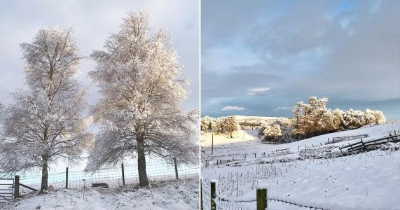 Snow falls over Dartmoor in Devon with ice forecast overnight