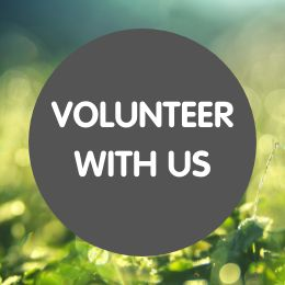 Volunteer with us in July