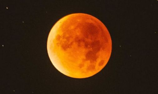 Lunar eclipse pictures: The very BEST pictures from the total lunar eclipse TODAY