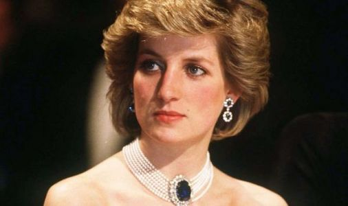 Princess Diana snubbed: Princess of Wales famous gown ignored by royal fans