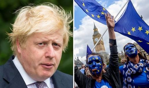 Remainer makes dramatic Brexit confession over Boris deal - 'Our dreams may die'
