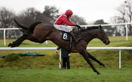 Marlborough racing tips and best bets for Thursday, January 21