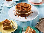 Woolworths launches a decadent Lotus Biscoff vanilla cake with buttercream and biscuits