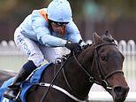 Robin Goodfellow's Racing Tips: Best bets for Monday, October 26