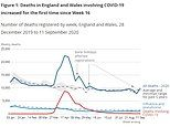 Weekly coronavirus deaths RISE in England and Wales for the first time in five months