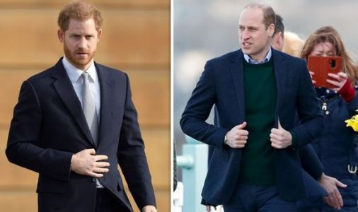 Prince Harry heartbreak: Duke 'isolated and vulnerable' without 'closeness' to William