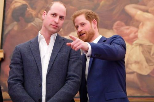 Princes William and Harry agree to split future proceeds of Diana Memorial Fund