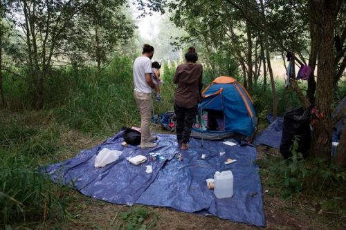 Inside Calais' biggest refugee camp where migrants plea for chance to live in UK