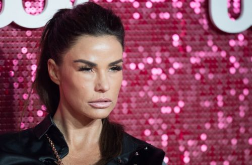 Katie Price 'in stitches' as son Harvey mocks her loved-up PDAs with boyfriend Carl Woods