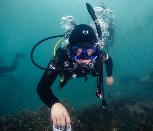 Chinese actor Huang Bo hosts underwater livestream in Sanya, call for ocean conservation