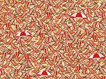 Puzzle challenges you to spot the skis hiding among a busy beach filled with deckchairs