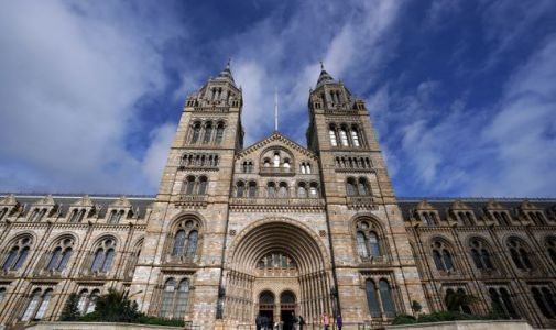 Coronavirus: London's Natural History Museum, Science Museum and Victoria & Albert Museum to reopen