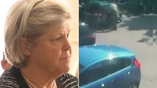 Pet owner cleared criminal charges after leaving her three pets to roast to death in hot car