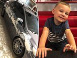 Boy, 3, is caught practising his art skills on his dad's beloved car and their pet dog