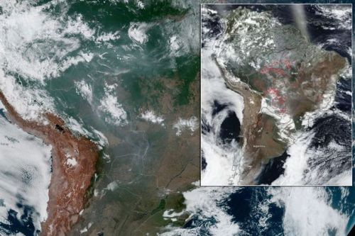 Amazon rainforest fires: Terrifying NASA images shows scale of devastation