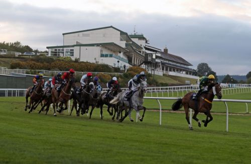 Hamilton Tips: Racecard, analysis and betting preview for the feature race today
