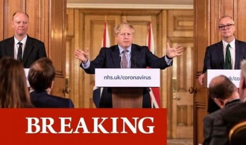 Boris Johnson to address nation with lockdown press conference after emergency Cabinet