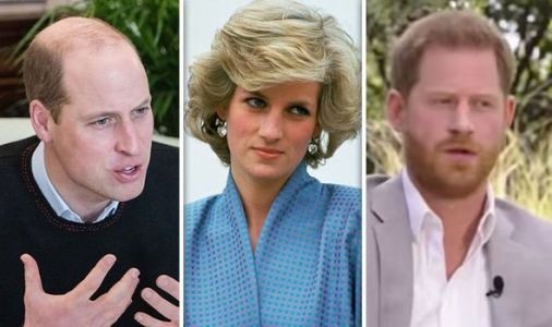 Prince William's anger at 'repeat of Diana suffering' with Kate before Harry comments