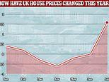 House prices rally to hit their highest ever levels - but how long will the recovery last?