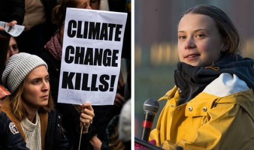Climate change: Furious WWF condemns 'staggering failure' of COP25 climate talks in Madrid