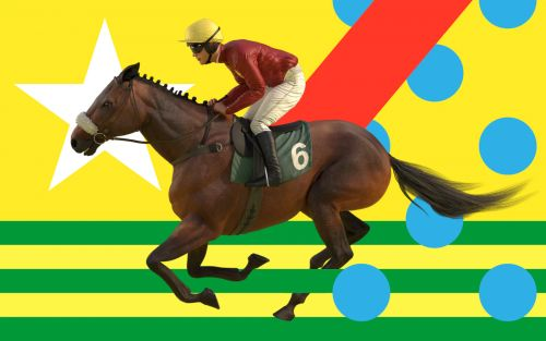 Virtual Grand National 2020 runners and riders guide and sweepstake kit