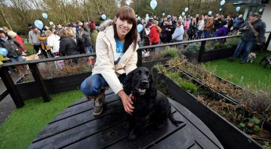Dog and their owners walk in support of ailing Marley