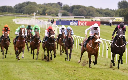 Marlborough racing tips and best bets for Tuesday, August 4