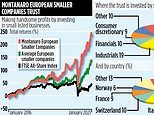 MONTANARO EUROPEAN: Big returns from small firms
