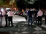 One-year-old boy is killed and three men are injured after shootout at a Brooklyn, New York cookout