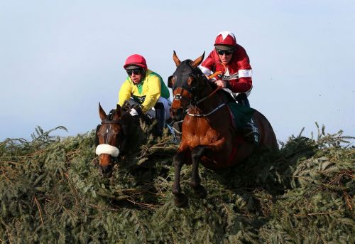 Potters Corner wins Virtual Grand National with favourite Tiger Roll fourth