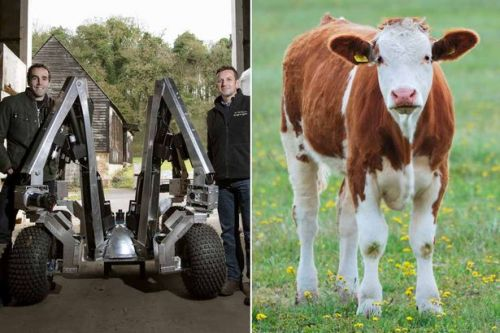 Field robots and cows with GPS collars could be the future of farming