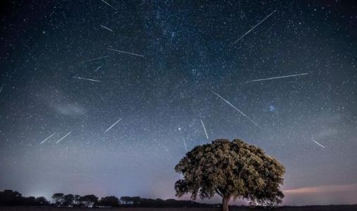 Perseid meteor shower UK time: When can you see the Perseids in the UK?