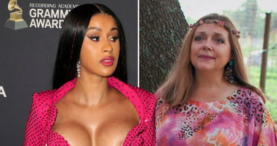 Cardi B takes swipe at Tiger Kings's Carole Baskin over WAP criticism