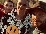 David Beckham enjoys a brisk country walk in the Cotswolds with sons Romeo and Cruz