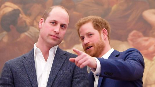 Prince William and Harry charities reported for 'inappropriate use of funds'