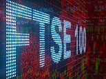 Fund guru: Shares will go on rising for the year