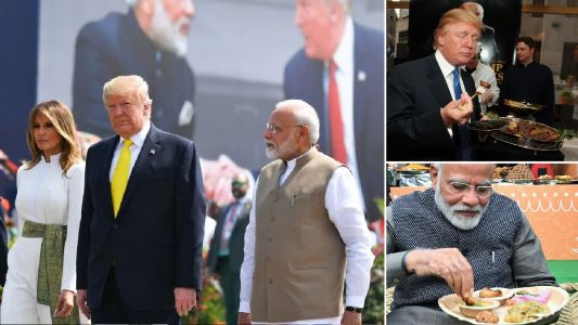 Meat-loving Donald Trump 'will struggle with vegetarian diet' during India visit