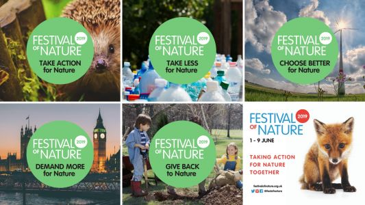 Pioneering New Approaches to Inspire Action For Nature