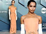Zoe Kravitz channels Audrey Hepburn wearing a timeless peach gown and opera gloves to the SAG Awards